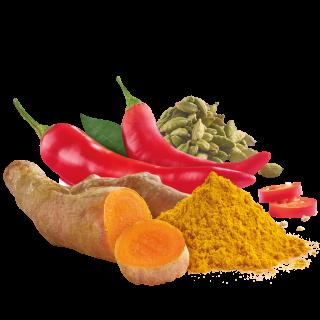 Curcuma mit Chili, Kardamom und Paprika