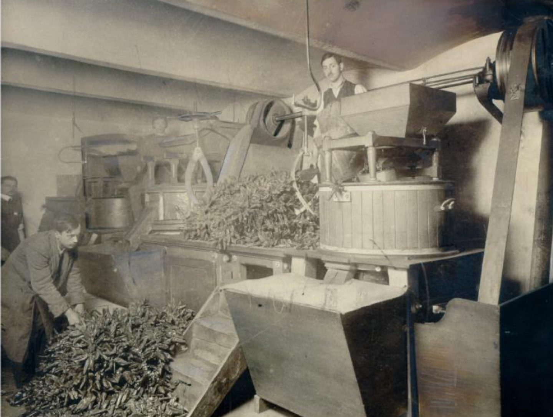 Crno-bijela fotografija: mlin za papriku Kotányi iz 1881.
